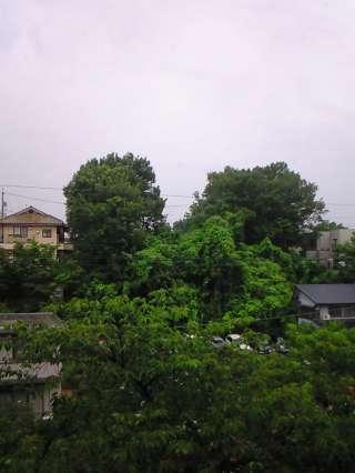 梅雨ですね・・・そんな日は・・・