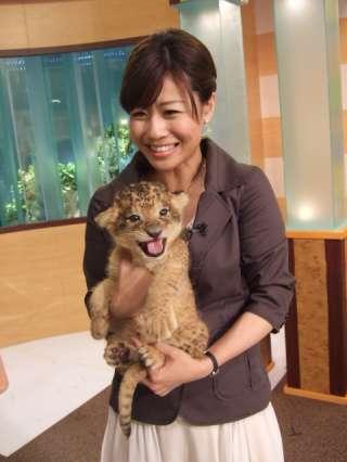 この後スタジオにライオンの赤ちゃんが!!