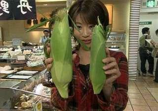 JR東海が美味しいとうもろこし♪